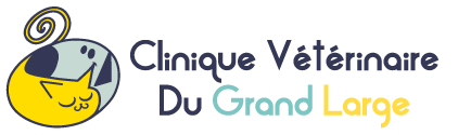 VETERINAIRE Pornic | La Clinique du Grand Large
